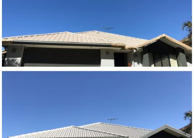 Roof-1-Sept19